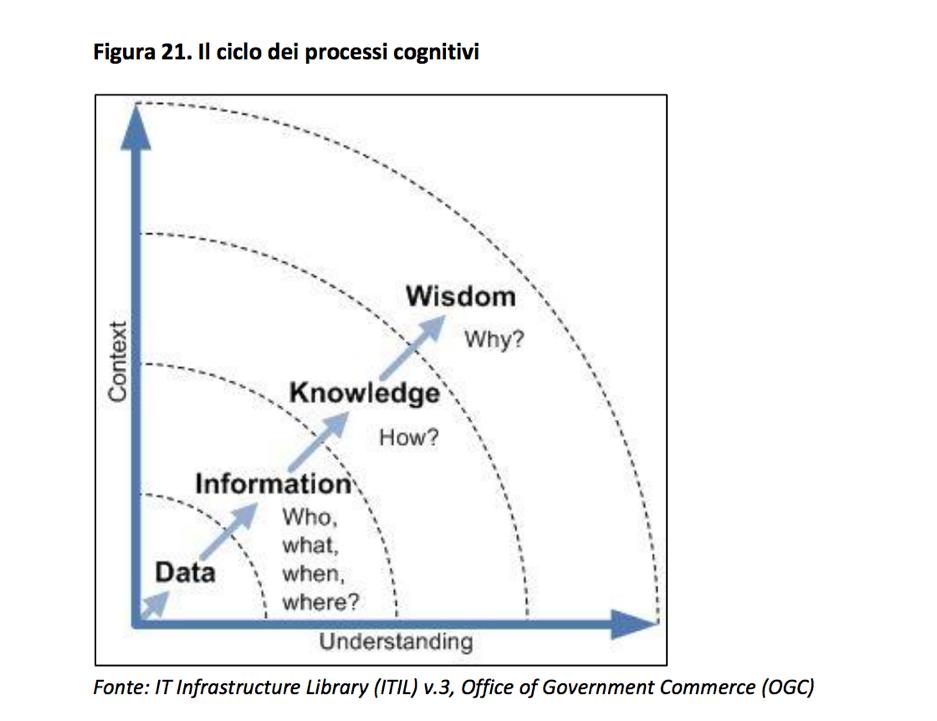 Il ciclo dei processi cognitivi